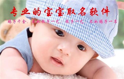专业宝宝取名软件正版婴儿起名成人改名 宝贝起名软件