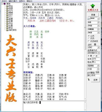 正版大六壬软件 (电脑版)